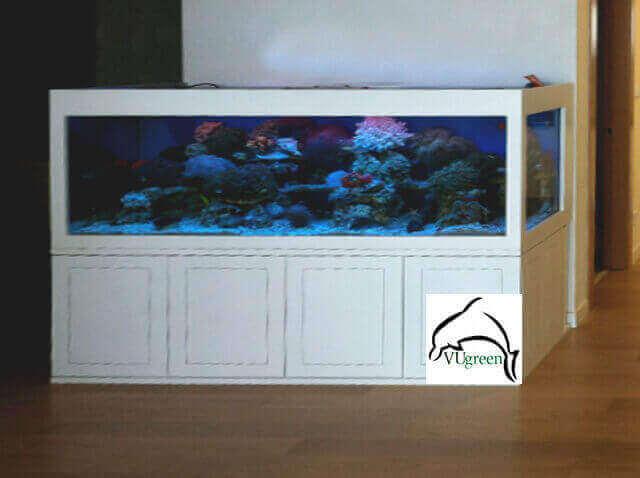 Bể cá biển ốp gỗ