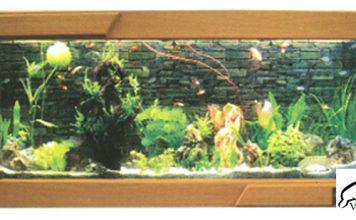 Bể cá treo tường mặt gỗ 8