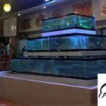 Bể hải sản xây mặt kính 1