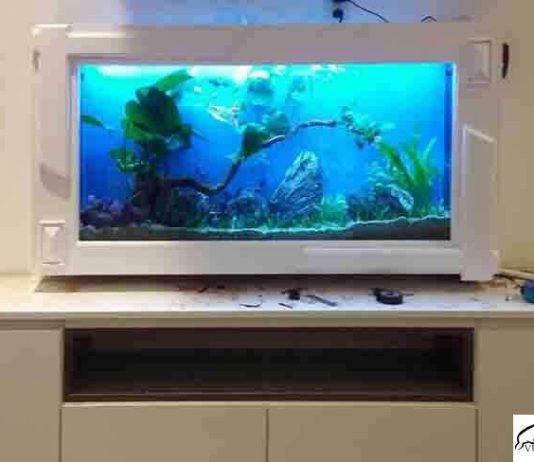Bể cá treo tường mặt ốp gỗ sơn trắng