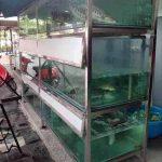 Dàn bể hải sản quán bia Thu Hằng