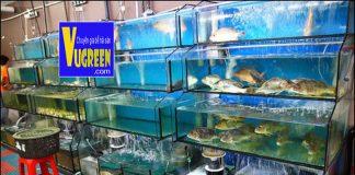 Bể hải sản