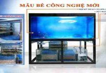 Hình ảnh và cách hoạt động bể cá rồng không đường ống