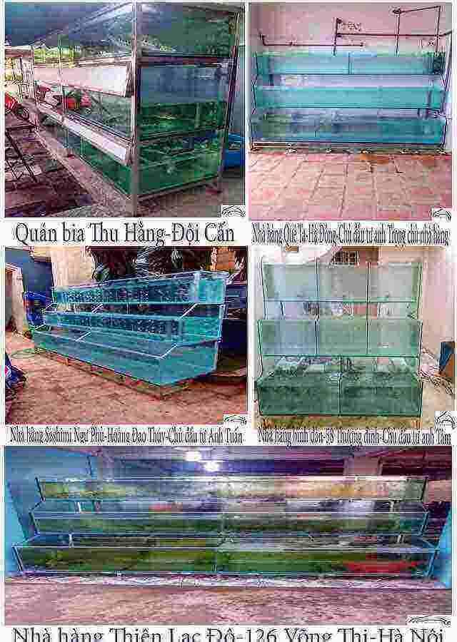 Dàn bể hải sản kính trồng kính giá rẻ 1
