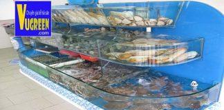 các loại bể nuôi hải sản kính chồng kính